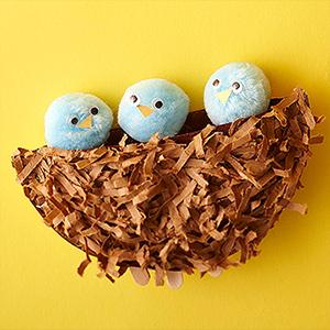 KateUpdates Baby Birds